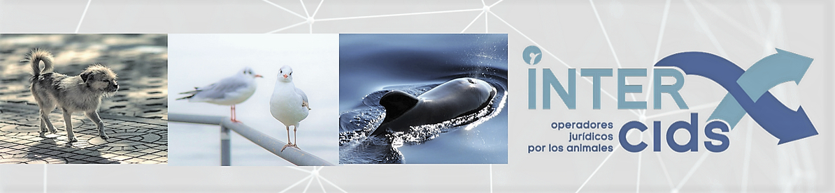 intercids.org